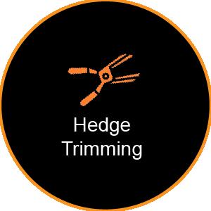 Corinium Arb - Gloucestershire - Hedge Trimming Service