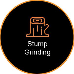 Corinium Arb - Gloucestershire - Stump Grinding Service